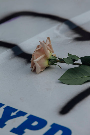 Rose on police car, May 2020, NYC - Alessandro Simonetti
