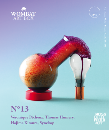 No. 13 - Wombat - The Photography and Art Box