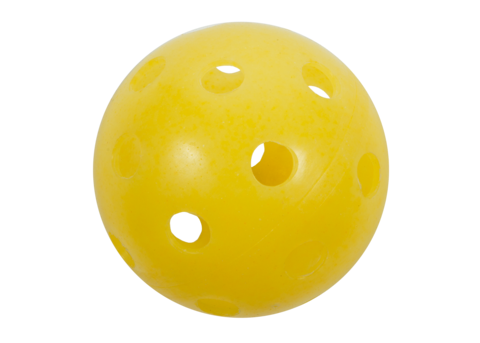 Dura Fast 40 Indoor Pickleball