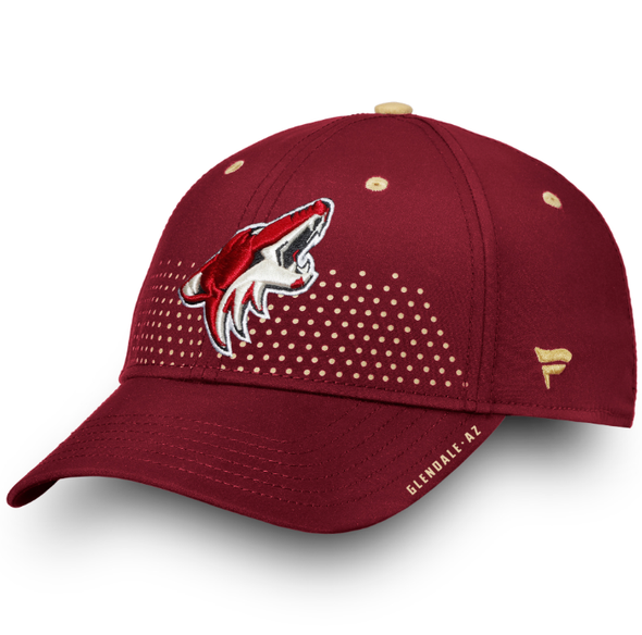 Men's NHL Arizona Coyotes 2018 Draft Flex Cap