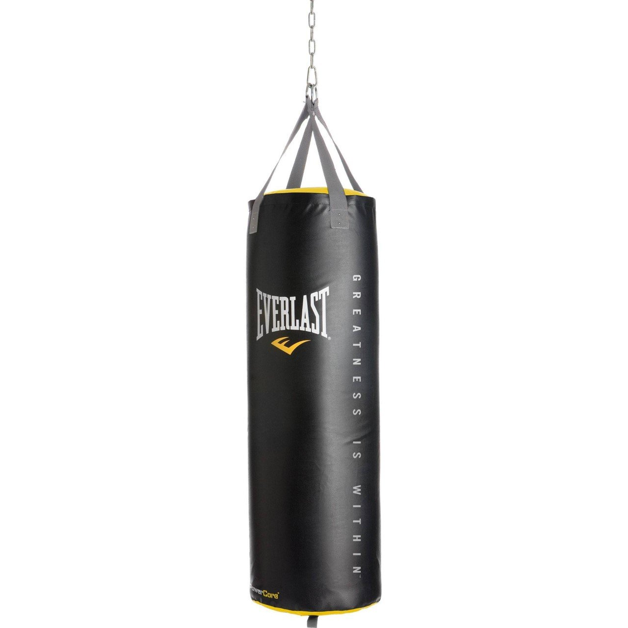 Everlast Powercore Nevatear 100lb Heavy Bag