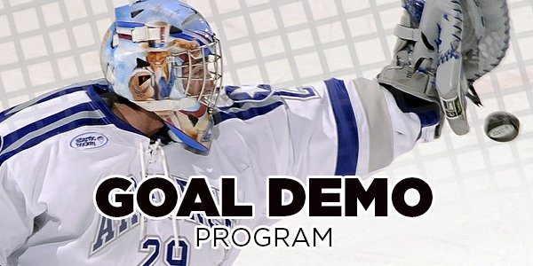 Demo Program and Rental Goalie Equipment Including Pads, Trappers, and Blockers Edmonton