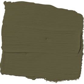 PPG1113-7 - Olive Green