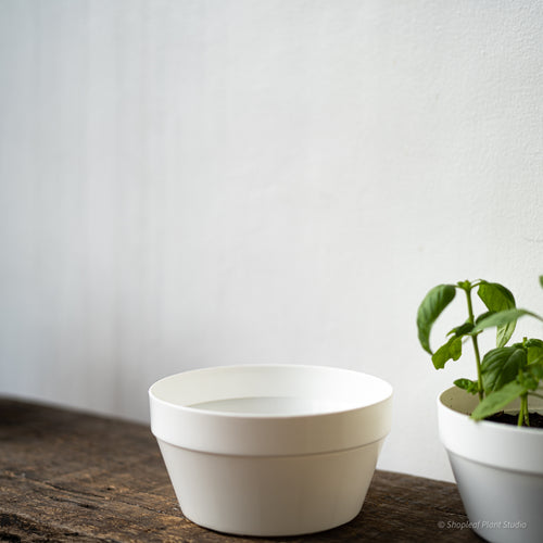 White Nursery Dish