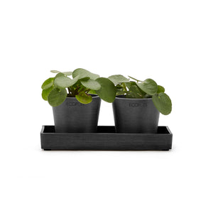 Ecopots Display Platter Amsterdam Mini 20