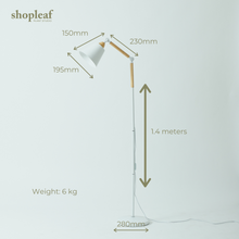 Load image into Gallery viewer, Shopleaf Floor Lamp