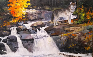 """Rock Water Fur"" original oil on canvas by Clermont Duval"
