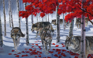 """Band of Wolves Under a Red Canopy"" by Clermont Duval 48"" X 30"" SOLD!"