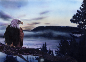 """Eagle at Mooserock"" by Costel Duval"