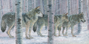 """Wolves Storm"" by Clermont Duval"