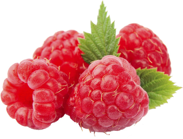 Aseptic Red Raspberry Puree, 42 lb