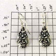 Load image into Gallery viewer, Sterling Silver Teardrop Earrings on French Hooks