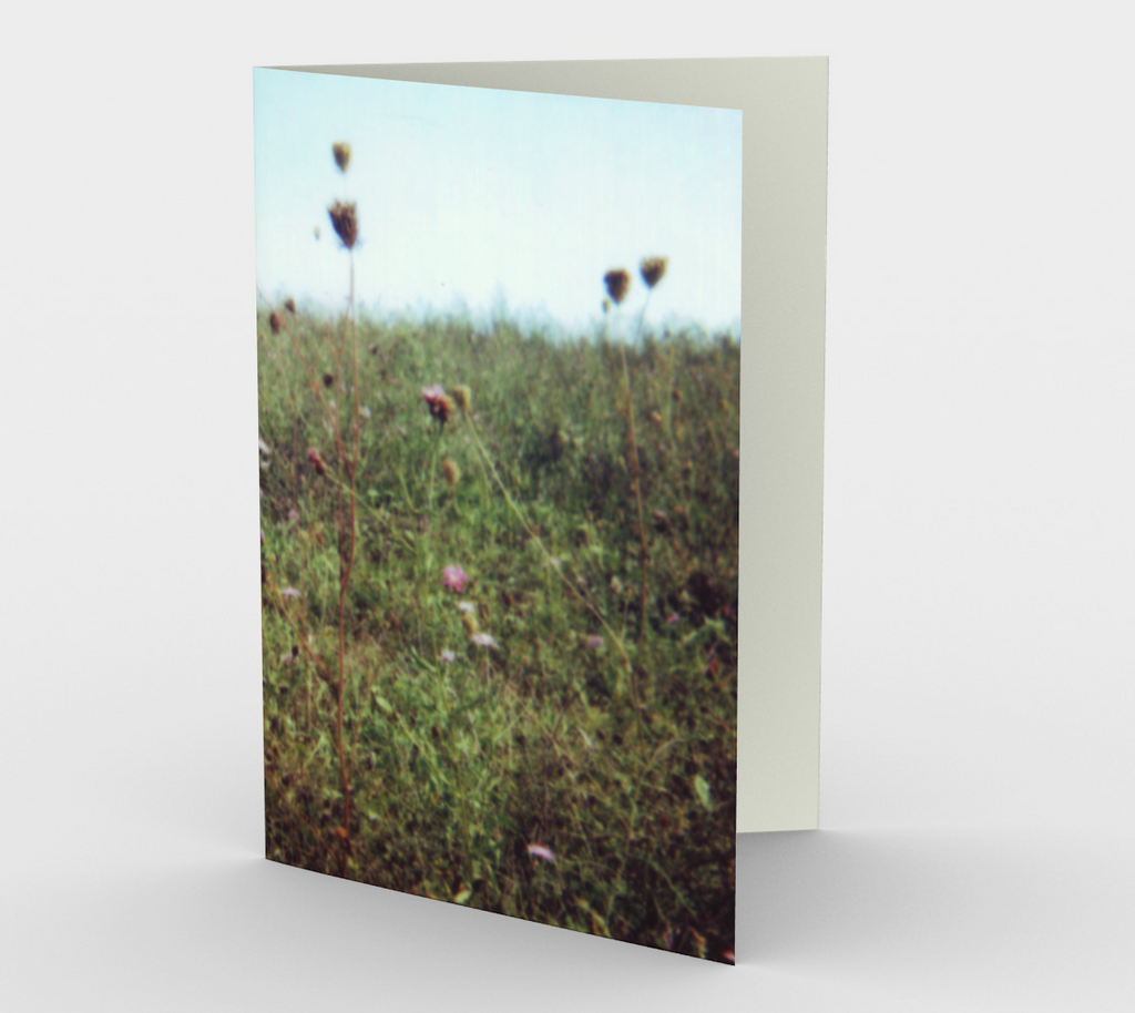 Meadow Note Card Set (3 pack)