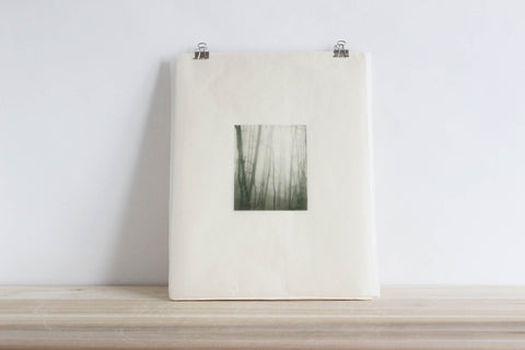 Forest Fog, photo art print over ceramic slab