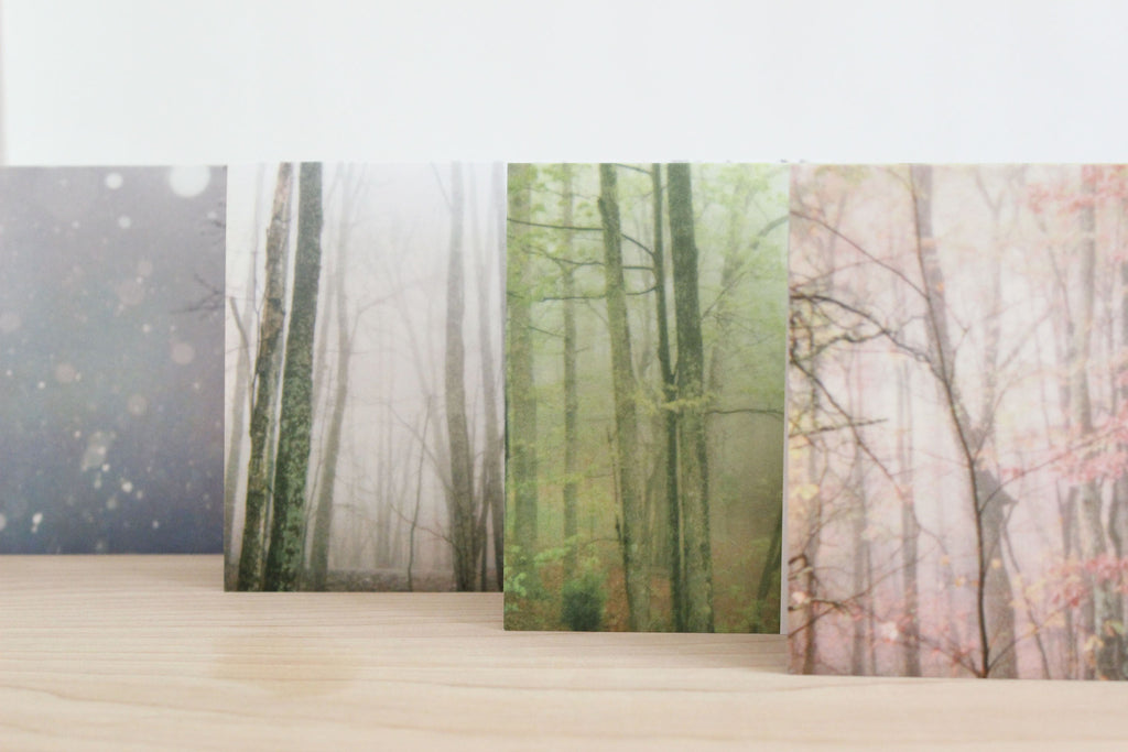 Forest photography blank note cards