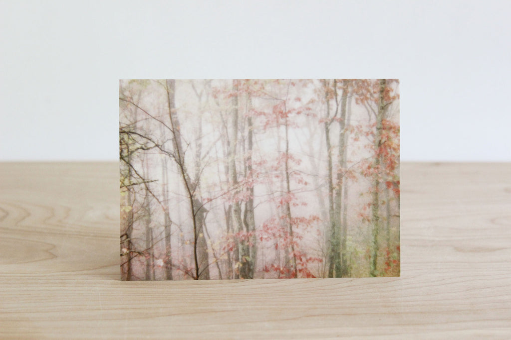 Forest Fog Note Card, Pink s/4