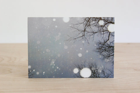 Forest Fog Note Card, Mixed seasonal Set, s/4