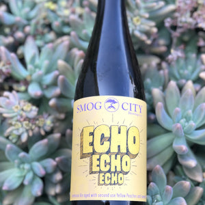 Echo Echo Echo (CA Beer Shipping)