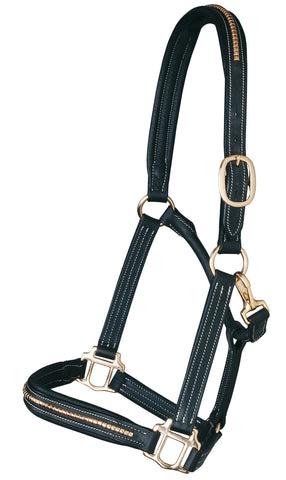 Pariani Clincher Brass Leather Headcollar