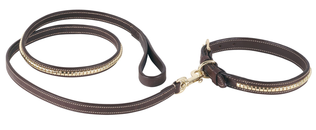 Pariani Clincher Dog Collar