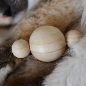 Furever Catlady MEOWLICULE wooden cat toy