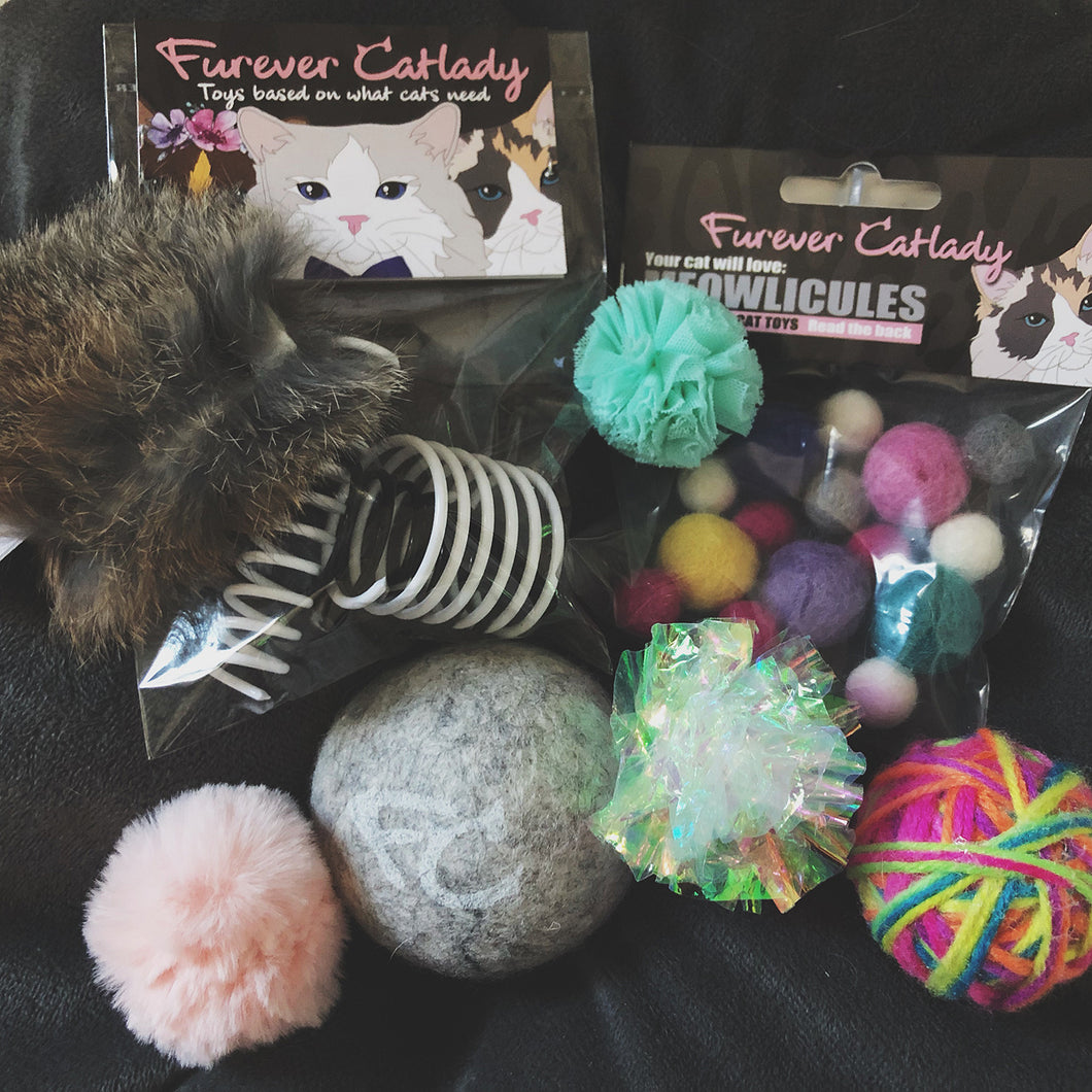 FUN BOX cat toys