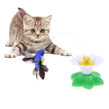 Load image into Gallery viewer, Interactive cat toy, with hummingbird