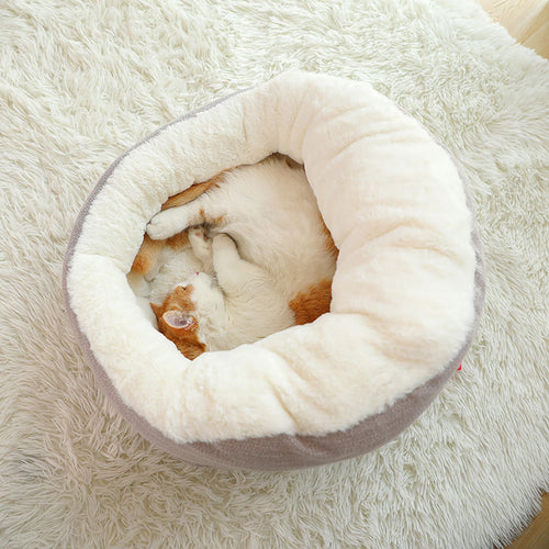 Cozy cat bed. Transforming from high to low
