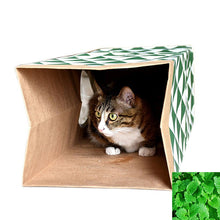 Load image into Gallery viewer, Hide and sneak Cat tunnel