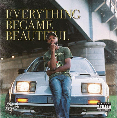 Everything Became Beautiful (LP)