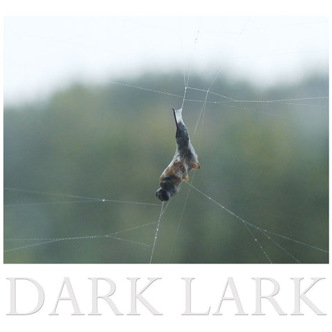 Construction & Destruction - Dark Lark