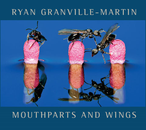Ryan Granville-Martin - Mouthparts and Wings