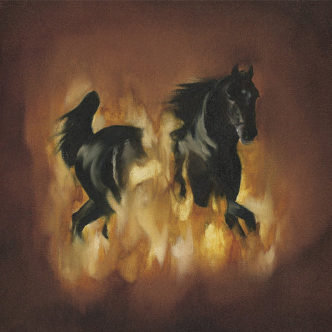 The Besnard Lakes - The Besnard Lakes Are The Dark Horse (Physical CD)