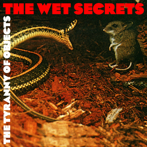 The Wet Secrets - The Tyranny of Objects