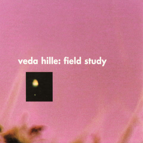 Veda Hille - Field Study