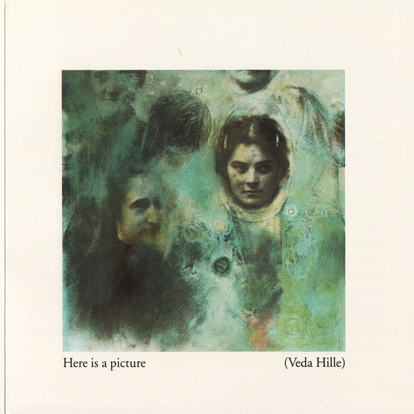 Veda Hille - Here Is a Picture (Songs for E Carr)
