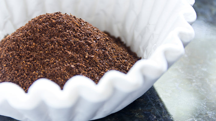 How to Brew Great Coffee From a Drip Filter Machine