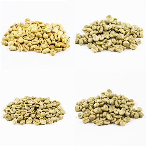 INTRO PACK Green Coffee beans