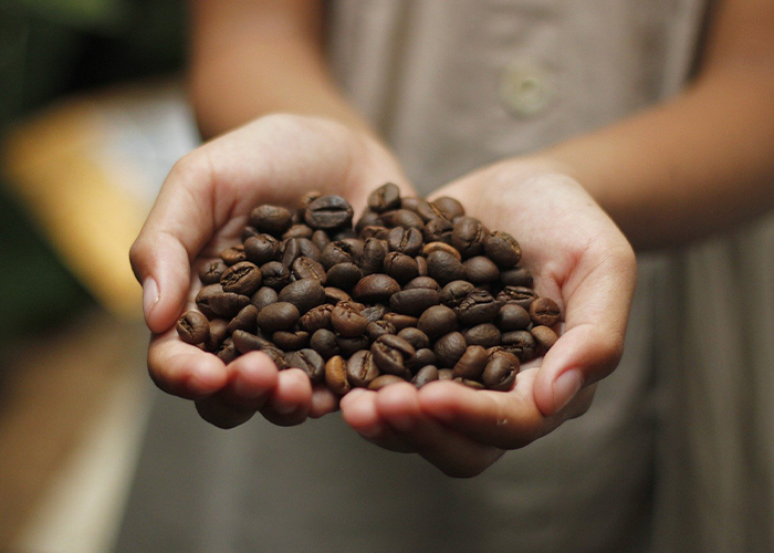 We offer aftercare and support to all ur wholesale coffee customers