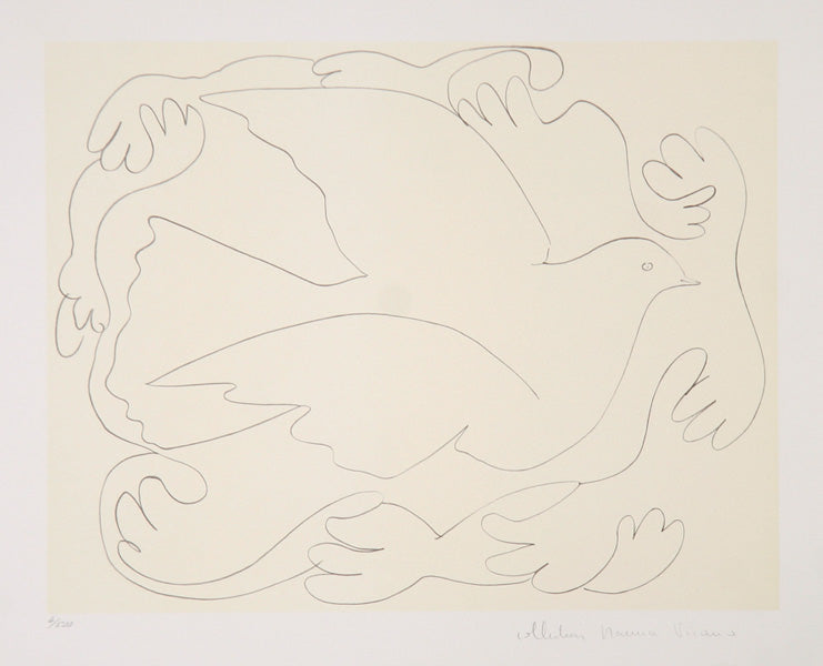 Pablo Picasso, Etudes de Mains et Colombe (2), 25-2, Lithograph on Arches paper