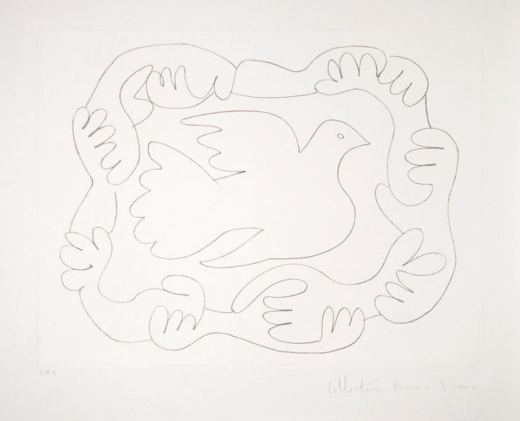 Pablo Picasso, Etudes de Mains et Colombe, 51-D, Lithograph on Arches Paper