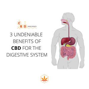 3 Undeniable Benefits Of CBD For The Digestive System