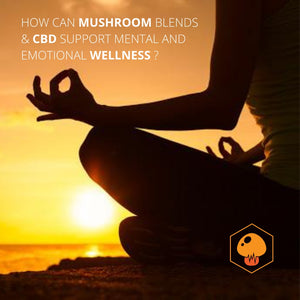 How Can Mushroom Blends and CBD Support Mental And Emotional Wellness?