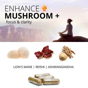 ENHANCE MUSHROOM+ Focus & Clarity