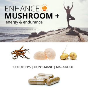 ENHANCE Mushroom+ Energy & Endurance