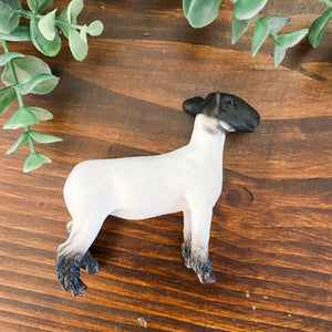FARM ANIMAL TOY - Champion Crossbred Market Lamb