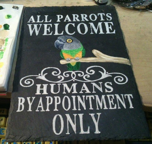 All parrots welcome