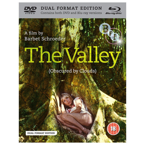THE VALLEY blu-ray front cover
