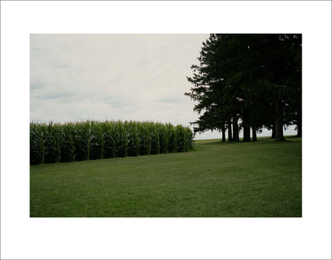 """Field of Dreams, Iowa"" by John Saponara"