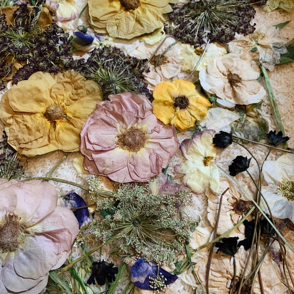 Pressed Flowers, Loose/Unframed